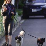 Helen Hunt Walks Her Little Dogs in Brentwood