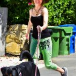 Lisa Rinna in a Green Sweatpants Walks Her Dogs in Hollywood