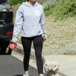 Lucy Hale in a Gray Hoody Walks Her Dog Elvis in Los Angeles