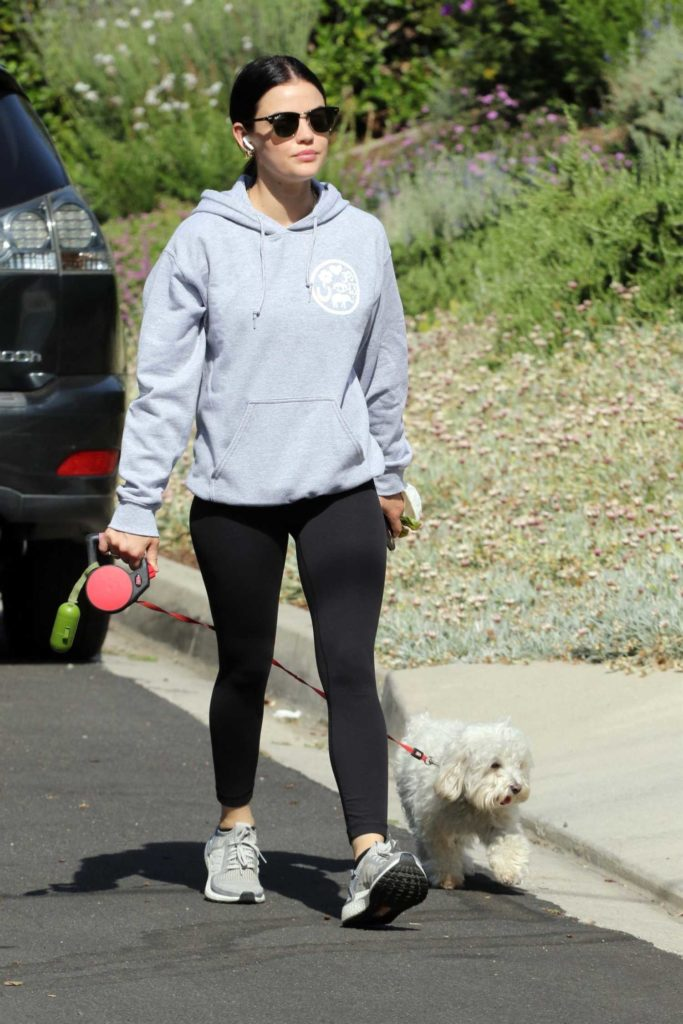 Lucy Hale in a Gray Hoody