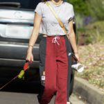 Lucy Hale in a Gray Tee Walks Her Dog During Quarantine in Los Angeles