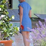 Scarlett Johansson in a Blue Mini Dress Picks up Flowers and Groceries at a Farmer's Market in The Hamptons, New York