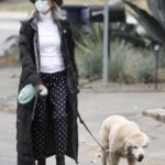 Diane Keaton in a Gray Bowler Walks Her Dog in Brentwood