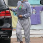 Scarlett Johansson in a Gray Hoody Goes Shopping in The Hamptons, New York