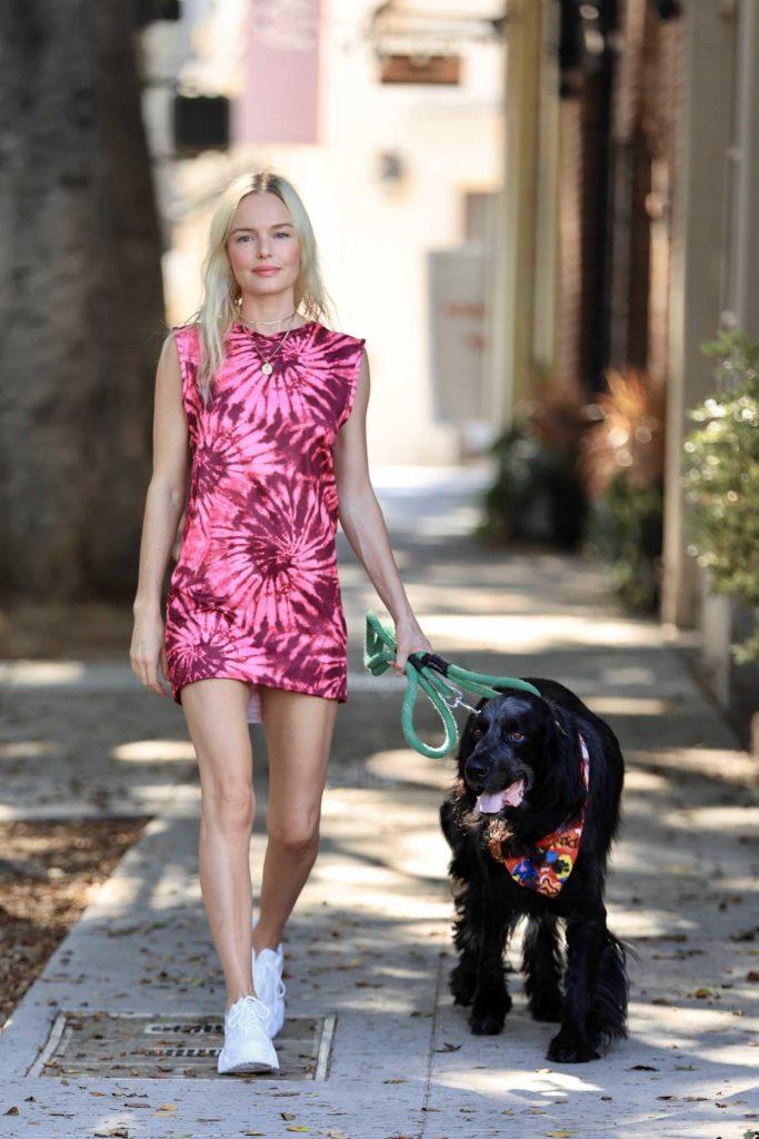 Kate Bosworth in a Pink Tie Dye Dress