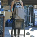 Malin Akerman in a Protective Mask Goes Shopping in Los Feliz