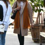 Laura Dern in a Beige Coat Was Seen Out in Brentwood