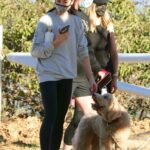 Ashley Greene in a Grey Sweatshirt Heads Out for a Hike with Friends in Los Angeles