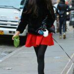 Famke Janssen in a Red Mini Skirt Walks Her Dog in Manhattan, NYC