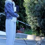 Stella Maxwell in a Grey Sweatpants Walks Her Dog in Los Angeles