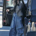 Diane Keaton in a Checked Blazer Was Seen Out in Brentwood