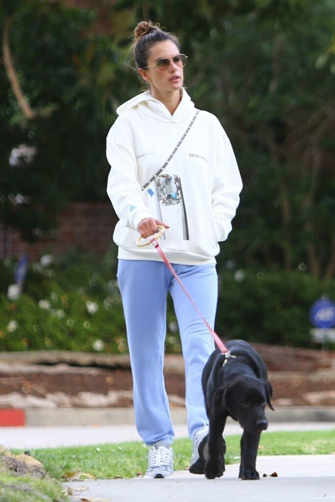 Alessandra Ambrosio in a White Hoodie