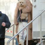 Selena Gomez Was Spotted with Her Puppy on the Set of Only Murders in the Building in New York City