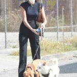 Kaia Gerber in a Black Pants Walks Her Dogs in Los Angeles 04/24/2021