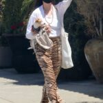 Scout Willis in an Animal Print Pants Was Seen with Her Dog in Los Angeles