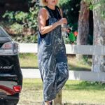 Malin Akerman in a Grey Jumpsuit Was Seen at Griffith Park in Los Angeles