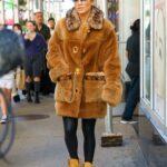 Jennifer Lopez in an Orange Fur Coat Was Seen Out in New York City