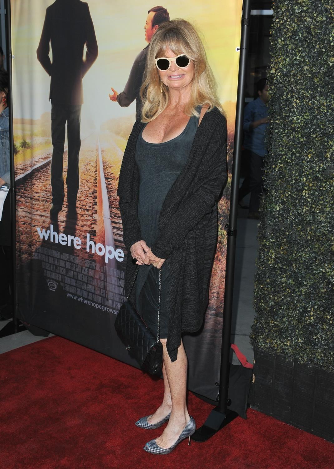 Goldie Hawn and Oliver Hudson at Where Hope Grows LA Premiere