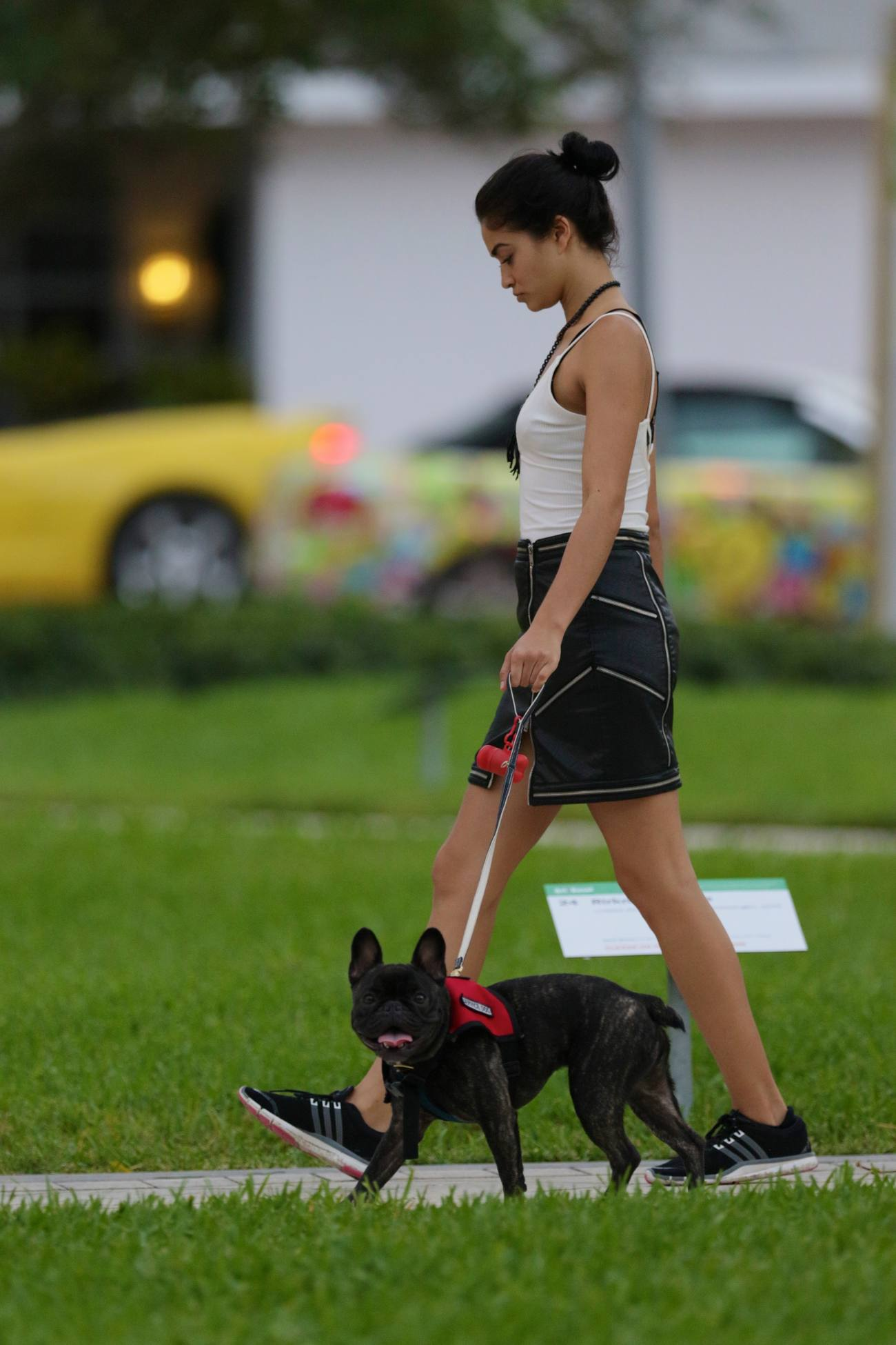Shanina Shaik Takes Her French Bulldog To Park-2